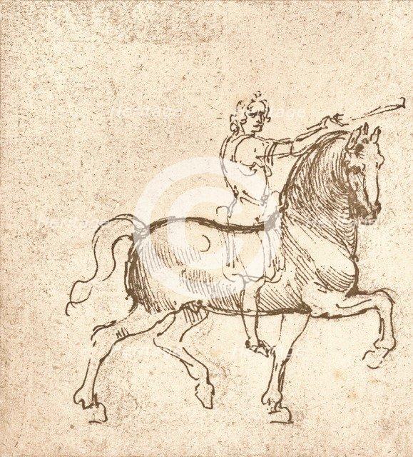 Drawing of a walking horse, c1472-c1519 (1883). Artist: Leonardo da Vinci.