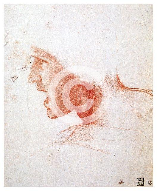'Head of a man shouting in profile to the left', 1503-1504. Artist: Leonardo da Vinci