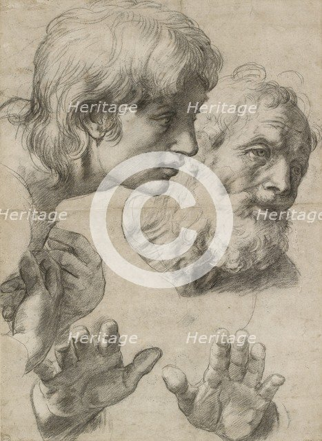 Studies of the Heads of two Apostles and of their Hands, 16th century. Artist: Raphael.