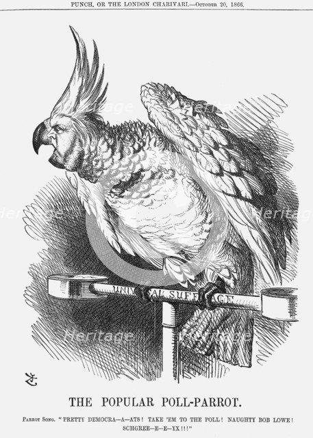 'The Popular Poll-Parrot', 1866. Artist: John Tenniel
