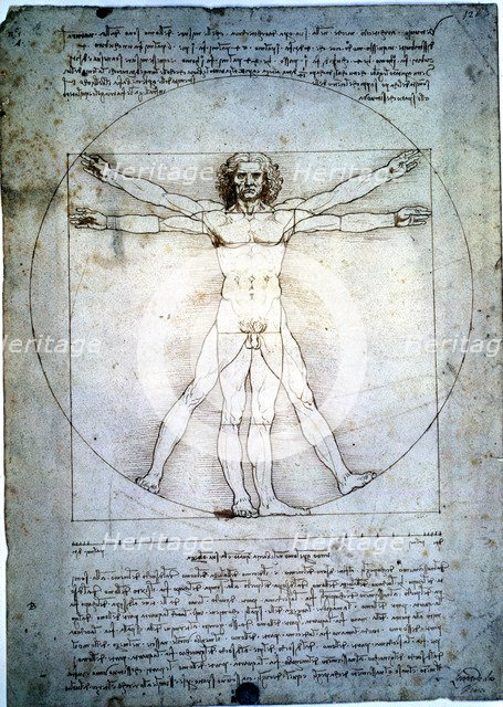 The proportion of the human figure', by Leonardo da Vinci.
