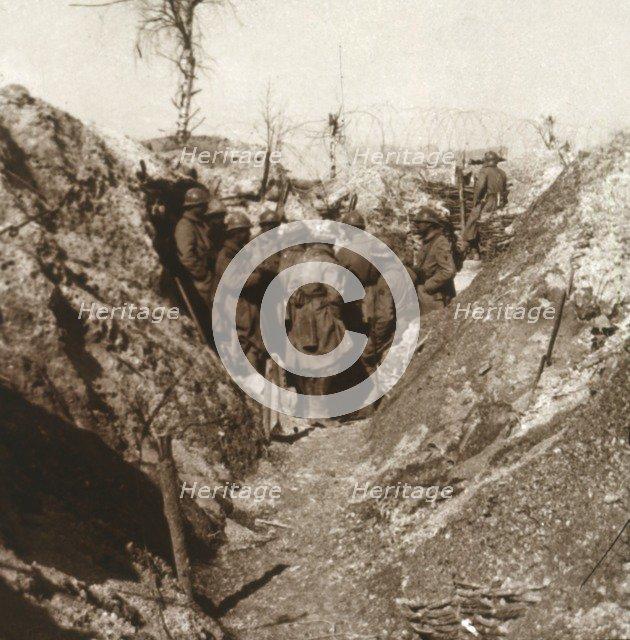 Bois de la Grille before attack, northern France, c1914-c1918. Artist: Unknown.