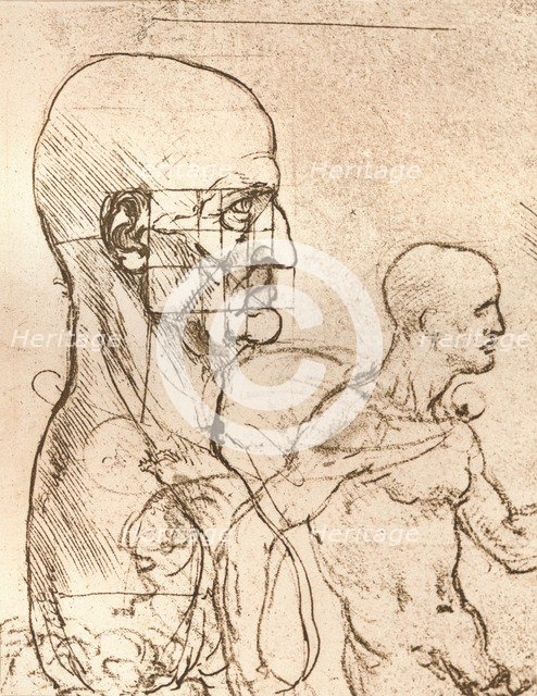 Drawing illustrating the theory of the proportions of the human figure, c1472-c1519 (1883). Artist: Leonardo da Vinci.