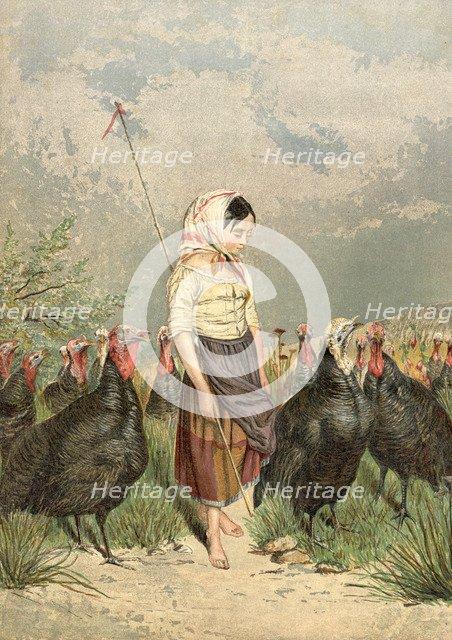 'The Turkey Guardian', 1858. Artist: Unknown