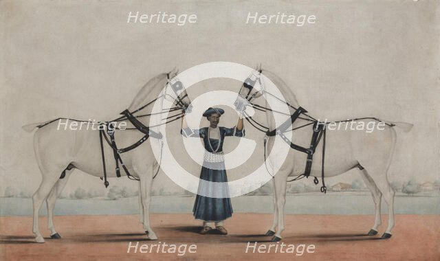 A Syce (Groom) Holding Two Carriage Horses, ca. 1845. Creator: attributed to Shaikh Muhammad Amir of Karraya.