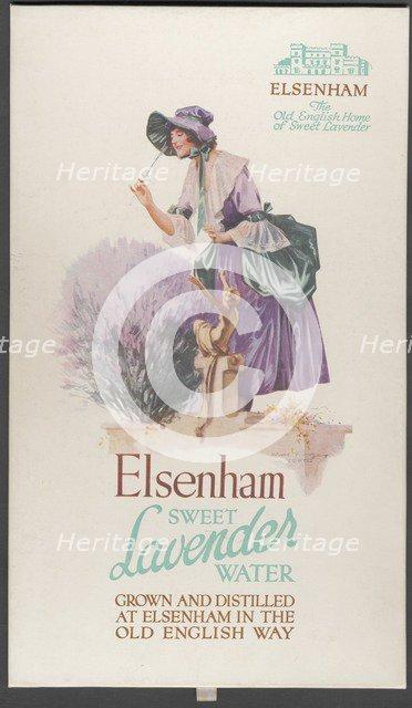 Elsenham Lavender, 1920s. Artist: Wilfred Fryer