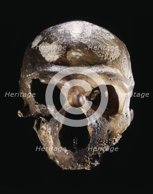 Neanderthal skull, from Guattari Cave, Italy, c50,000 BC. Artist: Werner Forman