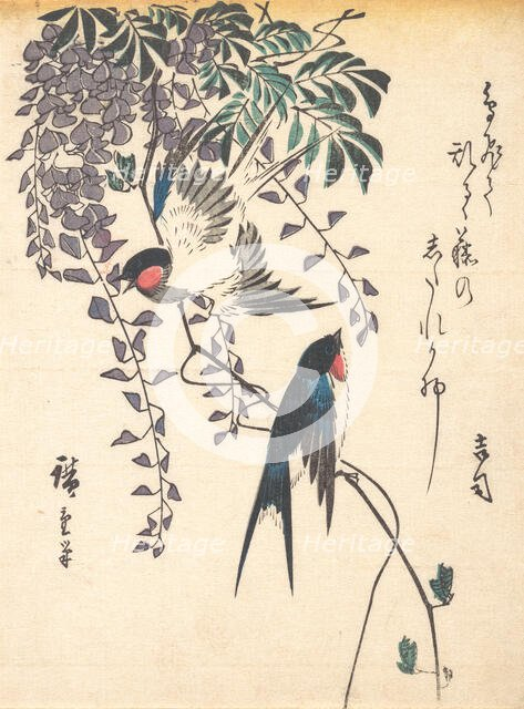 Swallow and Wisteria, mid-1840s., mid-1840s. Creator: Ando Hiroshige.