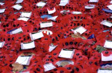 Thumbnail image of Wreaths at the Chapel, Whitehall, London. Artist: Bill Forbes